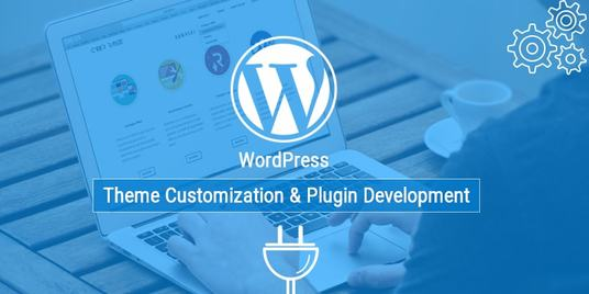 I will do any WordPress customization