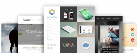 I will build WordPress site using Avada theme