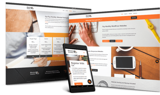 I will Create a professional Pay Monthly WordPress website