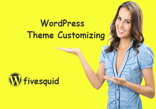 I will customize your WordPress premium theme