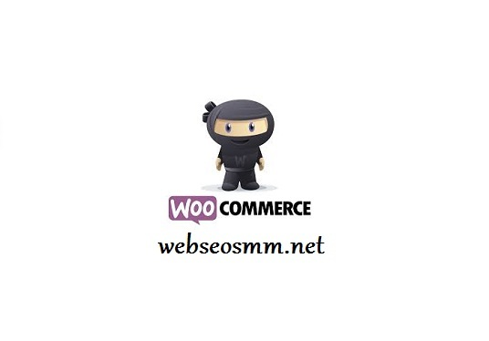 Do WooCommerce Optimization Checkup