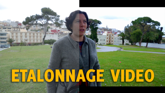 I will calibrate your video (Color correction)