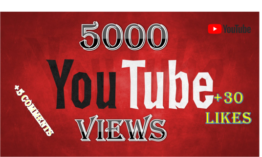 I will give you real 5000 youtube views, 30+ youtube video likes + 5 video comments