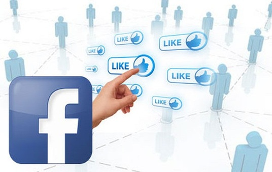 I will Provide 30,000 Facebook Page Likes