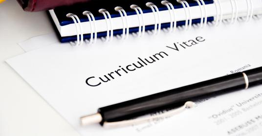proofread, edit and enhance CV's to a high standard