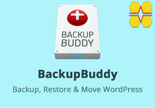 I will Backup Your Wordpress Website With BackupBuddy Premium