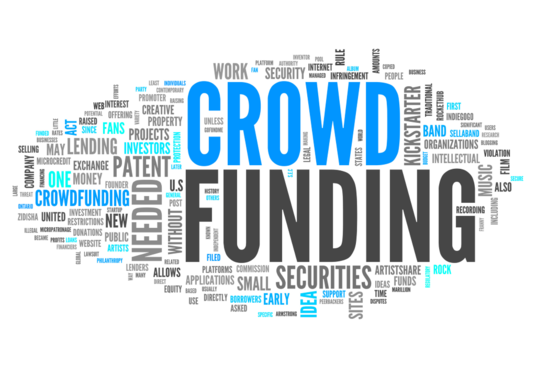 I will be your crowdfunding campaign consultant