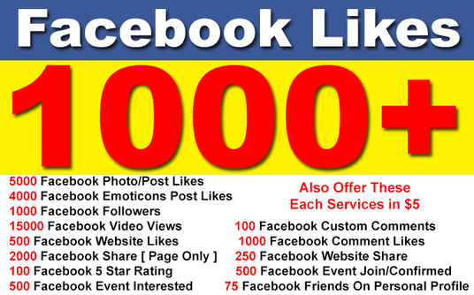 I will add 1000 Permanent Facebook Page Likes