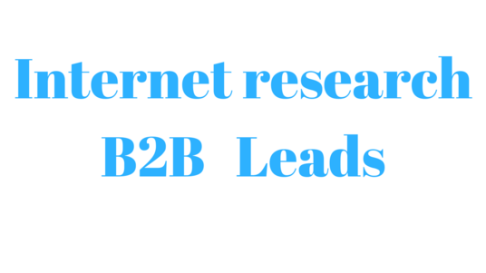 I will do internet research,b2b lead generation for you
