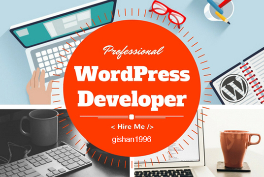 I will build a professional WordPress website within 24hr