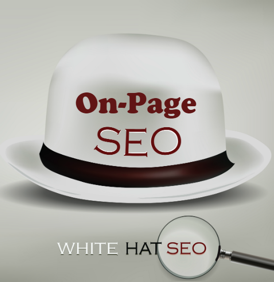 I will Configure Perfect On-Page SEO for your Wordpress Website