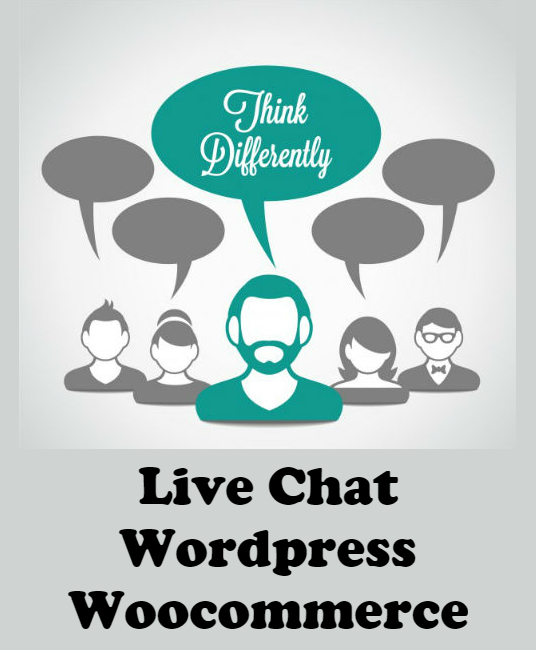 I will Setup Live Chat on Your Wordpress / Woocommerce Website