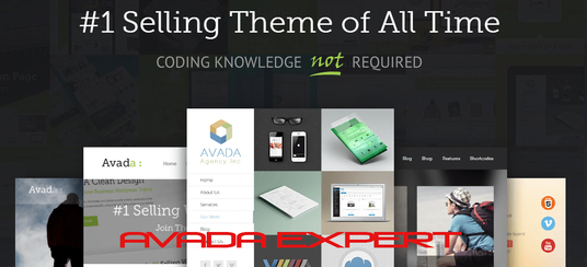 I will set up, customize and build full website by avada theme