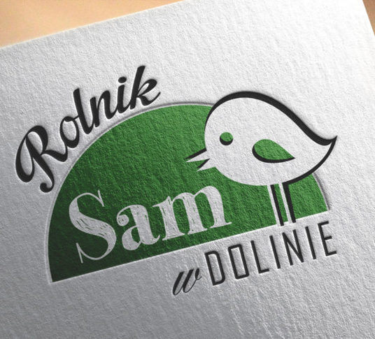 I will do memorable Logo design for your business or website