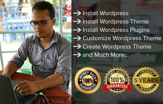 I will install wordpress , theme  and plugins