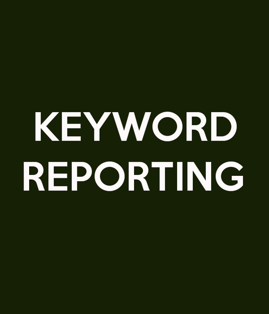 I will provide comprehensive keyword ranking reports for up to 5 keywords for your website