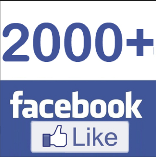 I will add 2000+ Real Facebook Fan Page Likes