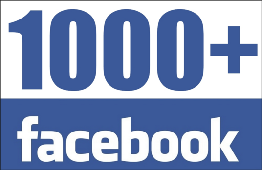 I will add 1000+ Real Facebook Fan Page Likes