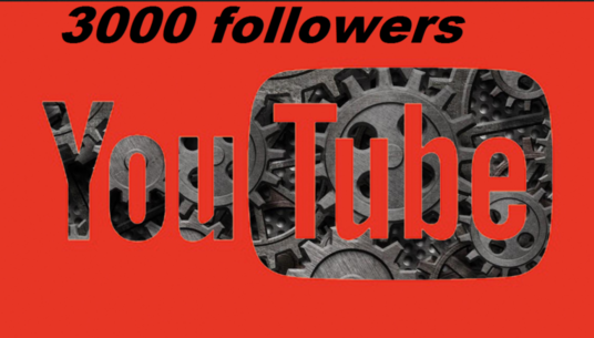 I will add 3000 youtube views Safe/Non Drops
