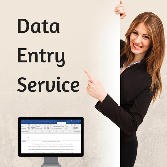 I will help you with data entry or virtual assistant work