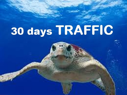 I will drive unlimited TRAFFIC to   any online shop  SLOWLY in 30 days