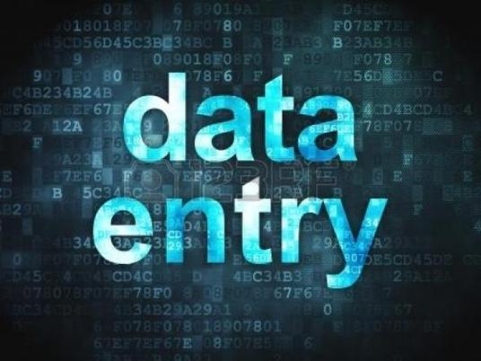 I will do Data Entry Work