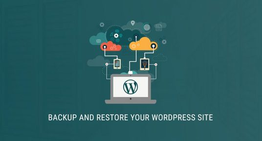 I will backup and restore your wordpress website