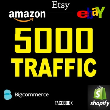 provide 5000 organic social visits to your SHOP