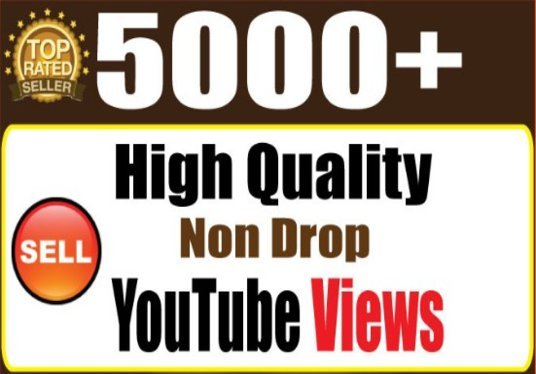 I will 5000 GUARANTEED Youtube Views super fast