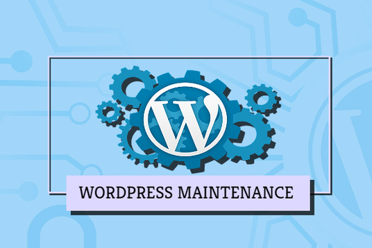 I will fix WordPress related issues
