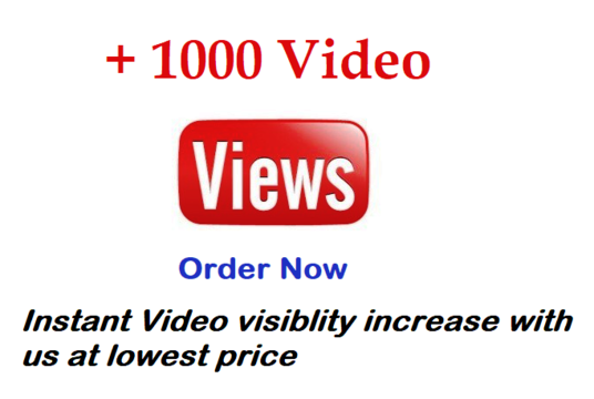 I will I will get youtube video viewed by 1000 Real person high retention