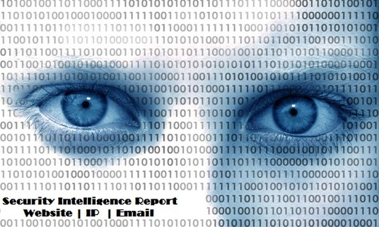 I will Provide Security Intelligence Report about your Website / IP / Email ID