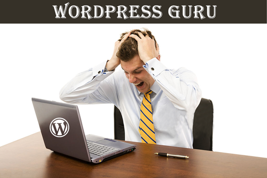 I will fix WordPress errors, issues, problems and customize theme