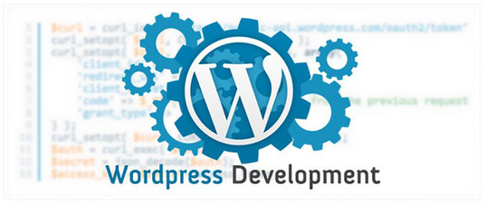Design and Create a Professional Wordpress Website For Your Business