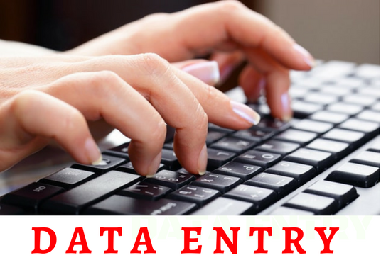 I will do data entry services 12hrs