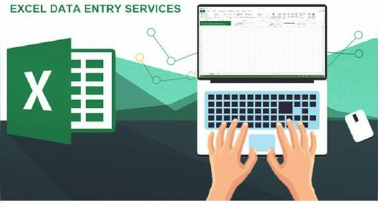 I will do excel data entry services for you