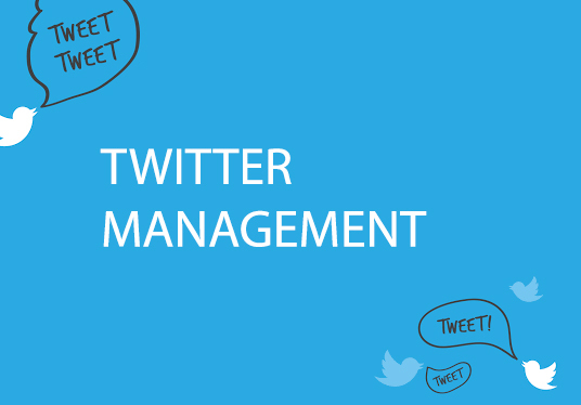 I will Boost Twitter Engagement Professionally Full Social Media Management And Rapid Growth