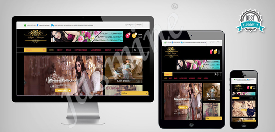 I will create professional responsive website
