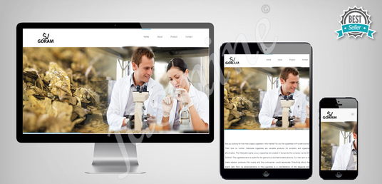create professional responsive website