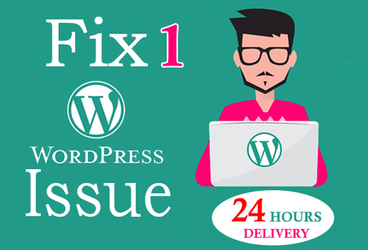 I will fix any sort of wordpress related issues
