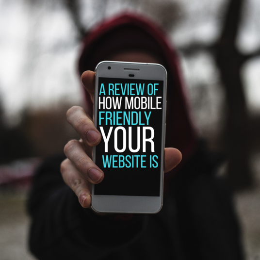 I will Write review of how mobile friendly your chosen site is