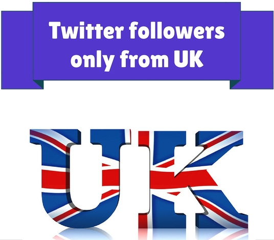 I will provide 600 UK Twitter Followers real instant