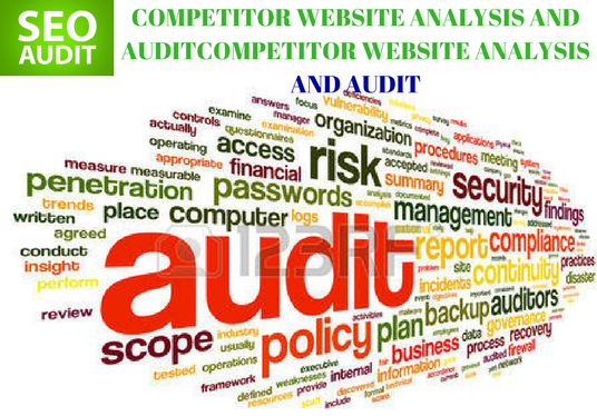 I will Do On Site SEO Audit