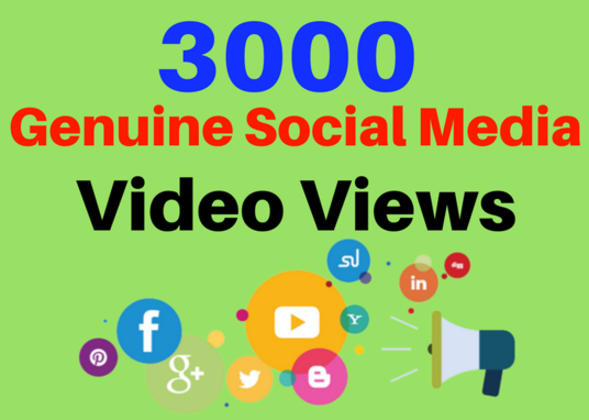 I will give you 3,000 youtube views to your youtube video,started within 48 hours