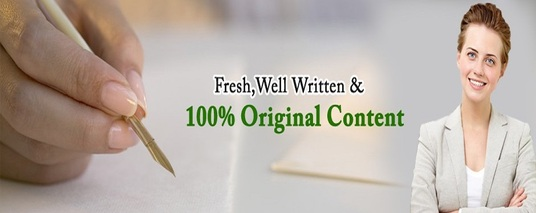 I will Write all your Website Content
