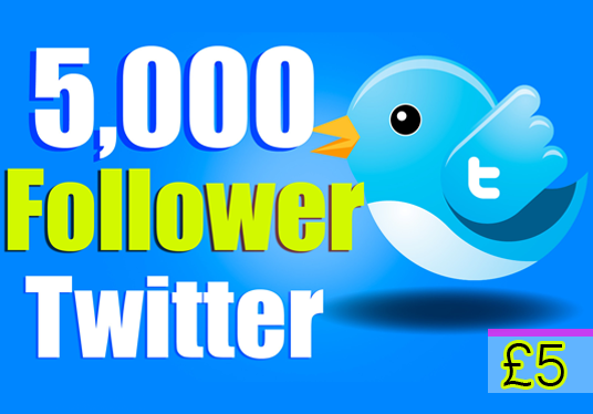 I will add 5000 Followers to your Twitter Page