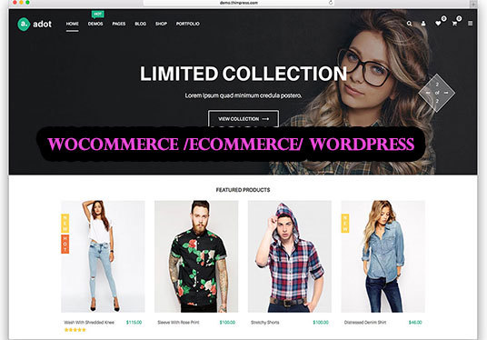 I will customize your WordPress  E commerce website