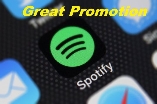I will give you real spotify followers