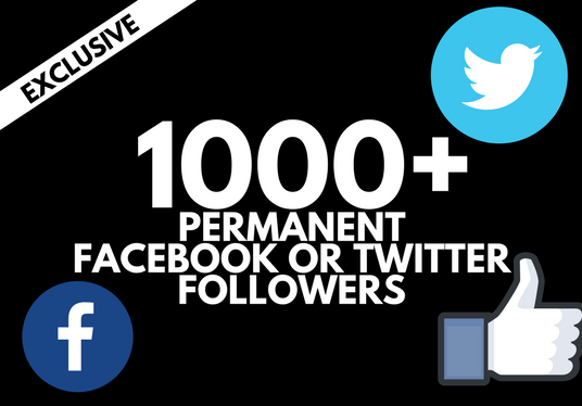 I will provide 1000 Facebook or twitter followers