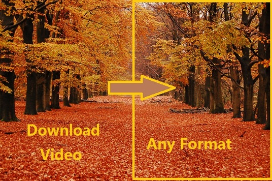 I will Download Your Youtube Video And Convert To Any Formats